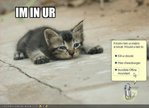 ms_lolcat